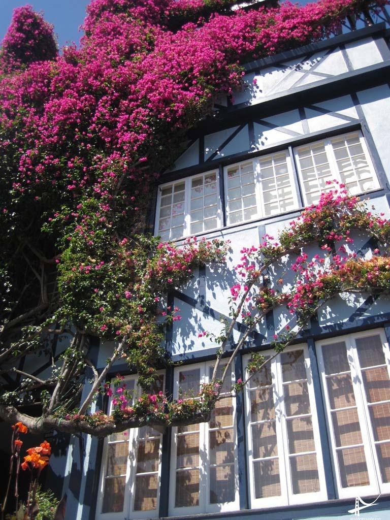 Casas na Lombard St