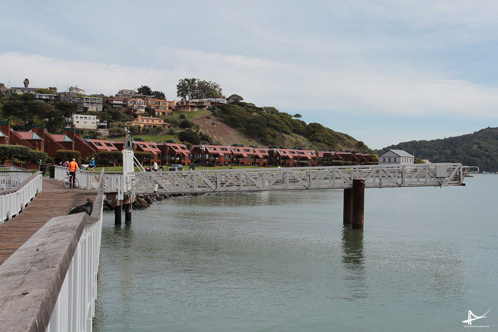 Tiburon - Cidade mais bonita da Baia de SF