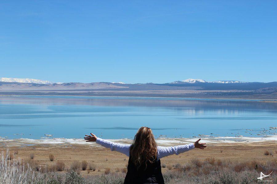Wal Mono Lake