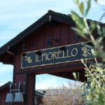 Tour e degustação de azeite de oliva - Il Fiorello