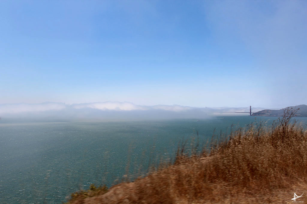 San Francisco - the foggy city