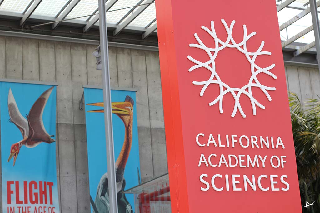 Academia de ciencias em San Francisco