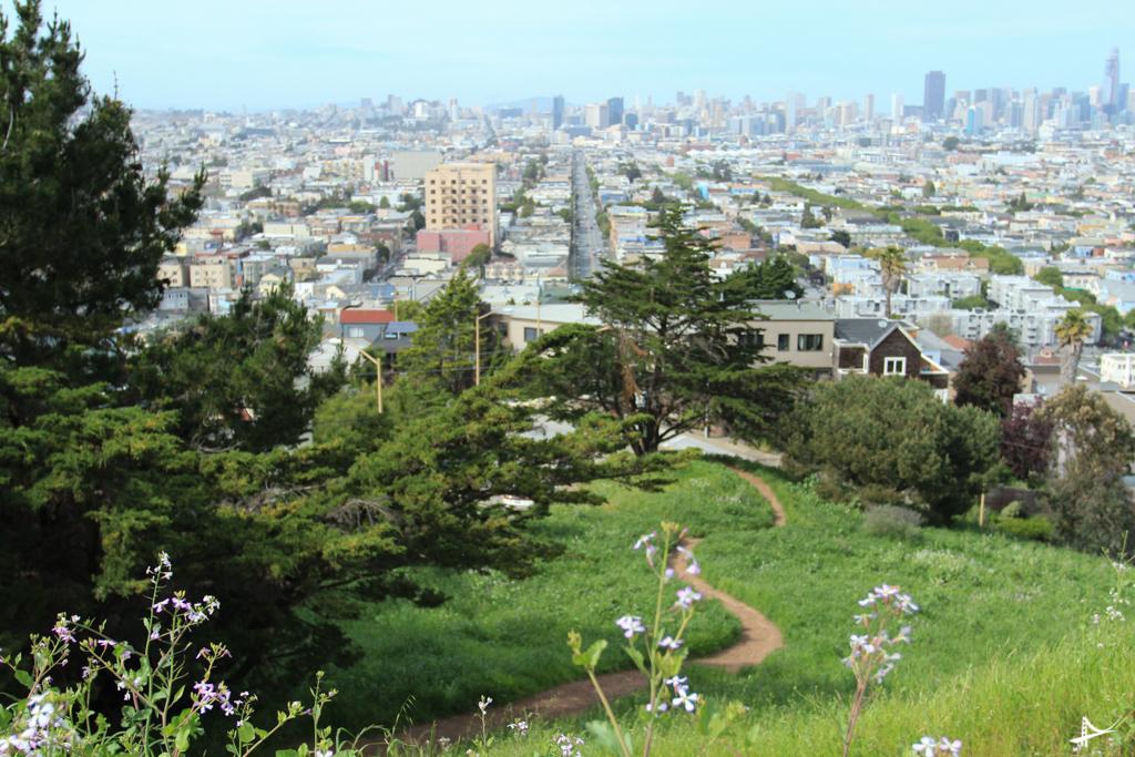 parques com vistas
