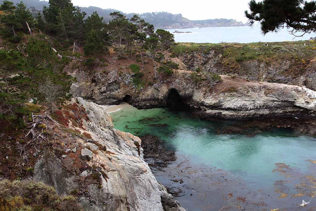 China Cove no Point Lobos