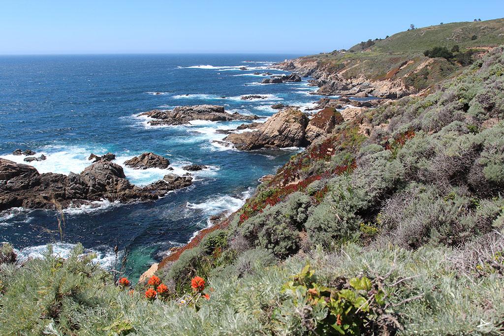 Costa da California