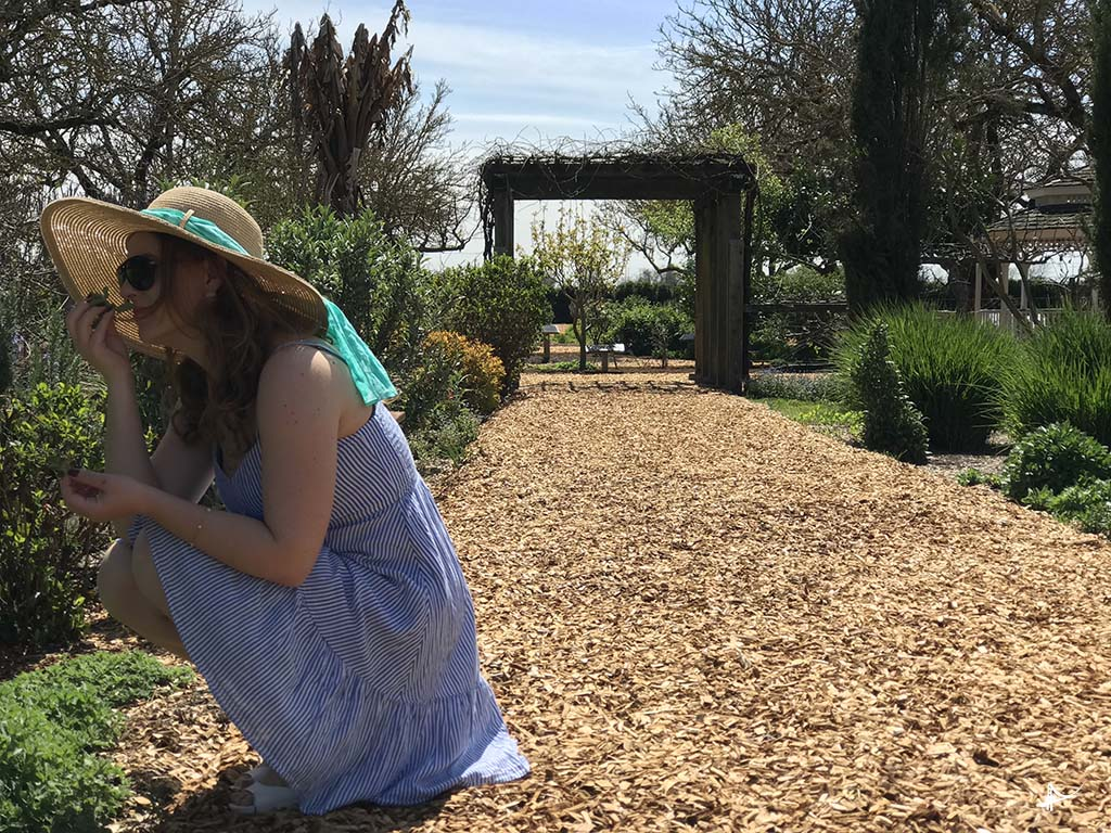 Sensorial gardens na Kendall-Jackson