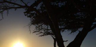 Por do sol em Carmel