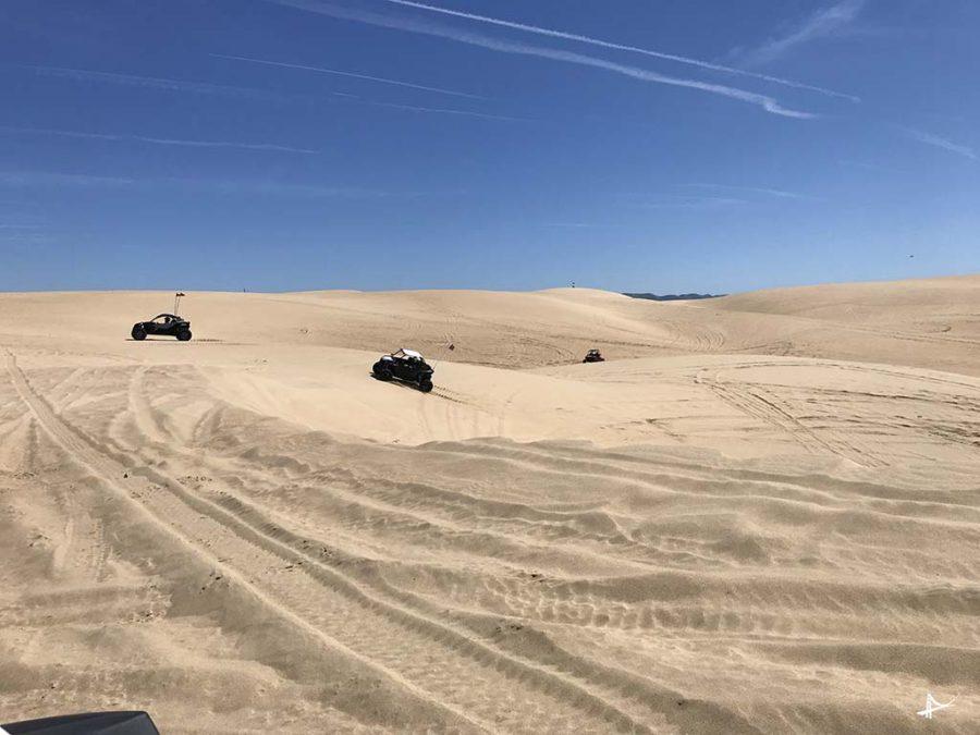 Dunas de areia Oceano Beach